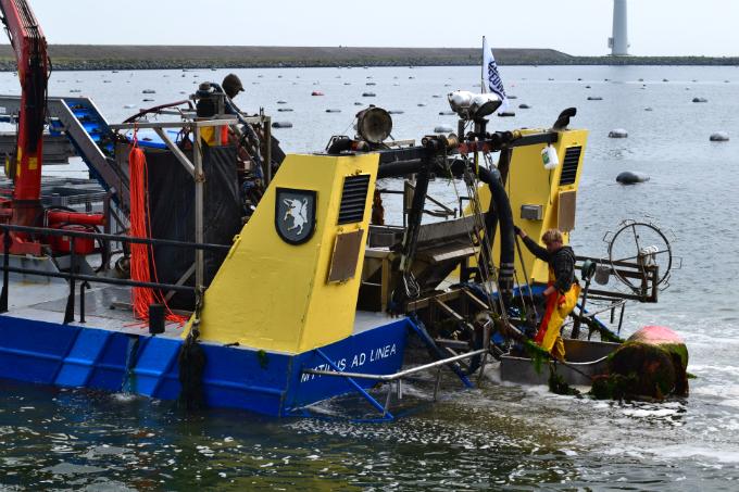 Mosselen vangen - vissers - Anniepannie