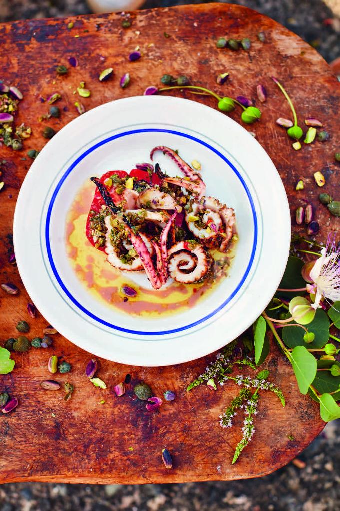 Deze gegrilde inktvissalade komt uit het boek 'Jamie kookt Italië' van Jamie Oliver. Een bijzonder lekkere salsa van pistachenootjes, munt, kappertjes en rode peper is de ster van dit gerecht!