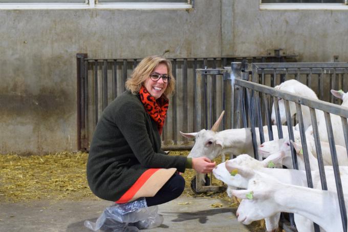 Geitenboerderij foto - Anniepannie